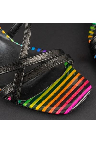 Rollerbird Color Siyah Topuklu Ayakkabı