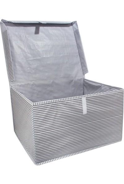 Alas Çok Amaçlı Kapaklı Kutu Hurç Maxi 50*40*30 cm