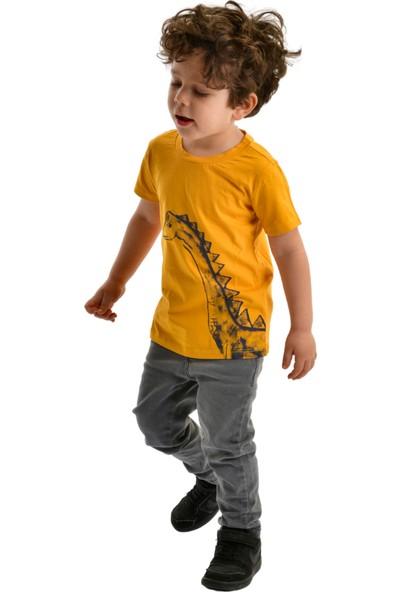 Çocuk Tshirt Kız / Erkek Kısa Kollu Aragosaurus Tshirt
