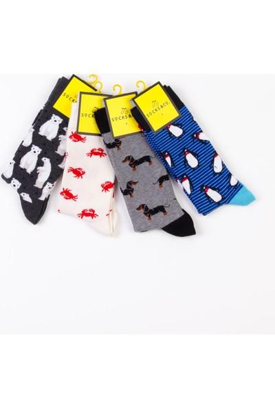 Socks&co 4 Çift Desenli Erkek Çorap 18873