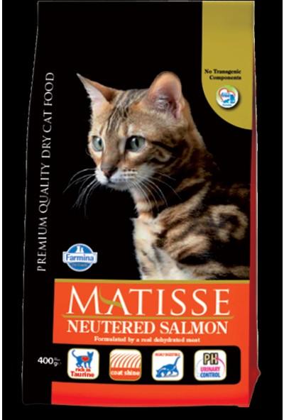 Matisse Neutered Salmon Kısırlaştırılmış Somonlu 1.5 kg Yetişkin Kuru Kedi Maması