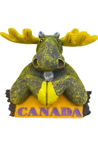 Vera Amerika Şehirleri Kanada Buzdolabı Magneti