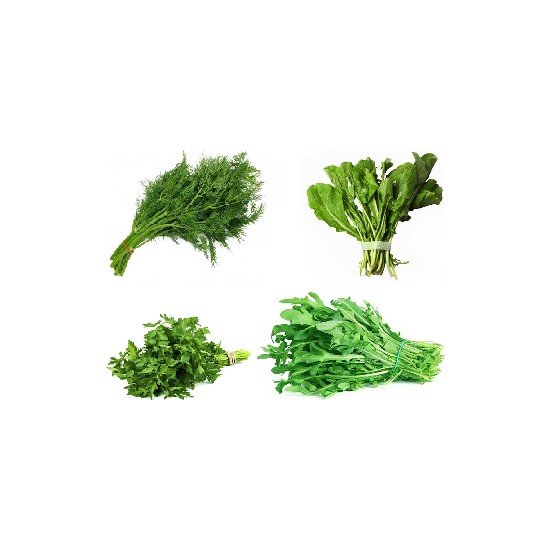 4'lü Yeşillik Tohum Seti Roka, Maydanoz, Dereotu, Tere