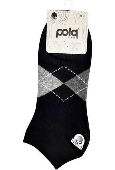 Pola Erkek Iskar Cotton Patik Çorap (12 Adet)