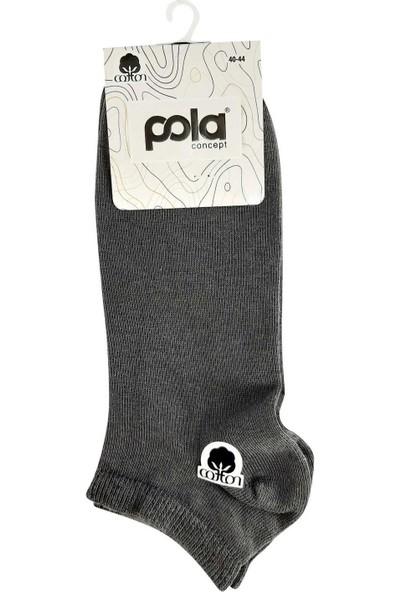 Pola Erkek Pure Cotton Patik Çorap (12 Adet)