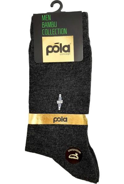 Pola Erkek Tina Bambu Soket Çorap (12 Adet)