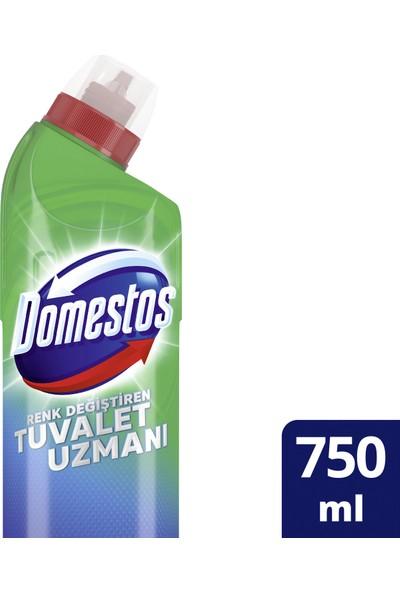 Domestos Renk Değiştiren Tuvalet Uzmanı Tuvalet Temizleyici 750 ML