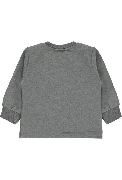Tuffy Erkek Bebek Sweatshirt 6-24 Ay Gri