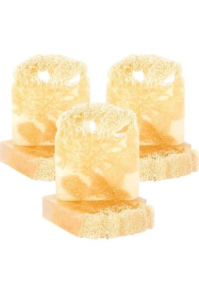 3 x The Soap Factory Doğal Kabak Lifli Hindistan Cevizi Yağı Sabunu 120 gr (Toplam 3 Adet)