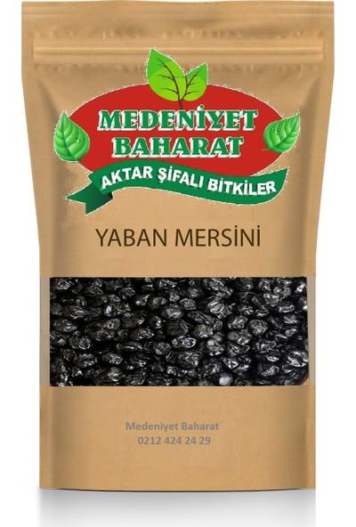 Medeniyet Baharat Yaban Mersini (Blueberry) 250 gr