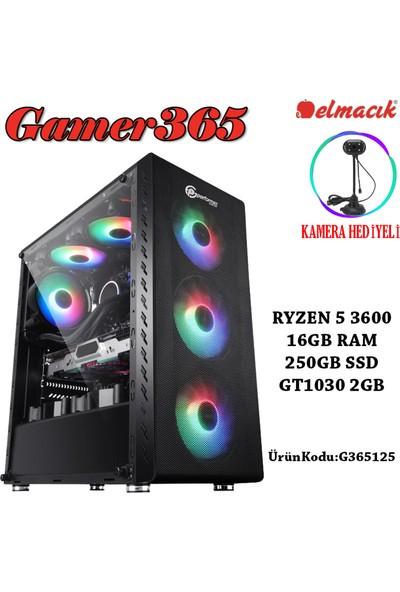 Gamer365 AMD Ryzen 5 3600 16GB 250GB SSD GT1030 Freedos Masaüstü Bilgisayar G365125