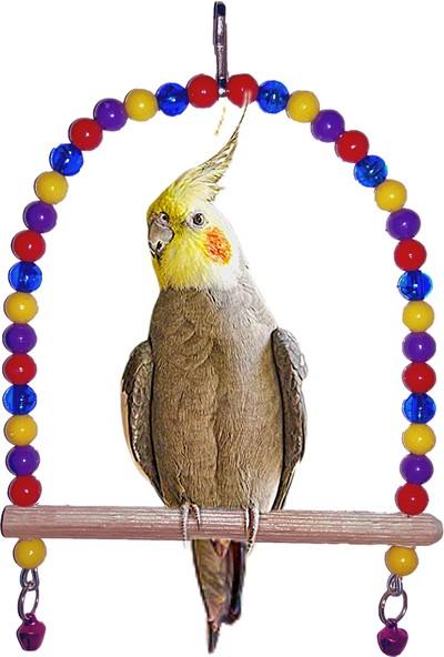 Alyones 1. Kalite Muhabbet Kuşu Salıncağı