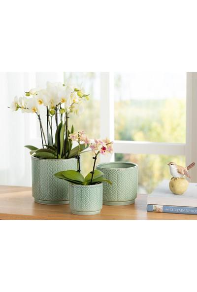 English Home Leafy Saksı 13.4X13.4X12 cm Yeşil