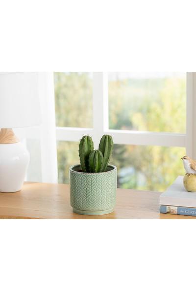English Home Leafy Saksı 10.2X10.2X9.3 cm Yeşil