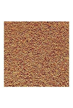 Agrobazaar Dökme Yonca Tohumu 1 kg