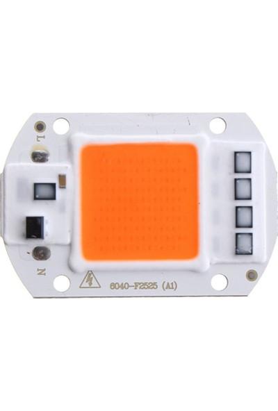 Motorobit Ful Spektrum 220 V Cob LED 50 W Bitki Yetiştirme Işığı