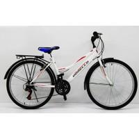 Dorello Bisiklet 2650 Model 26 Jant Bisiklet Şehir Bisikleti Şehir Bisikleti Çamurluklu Bagajlı