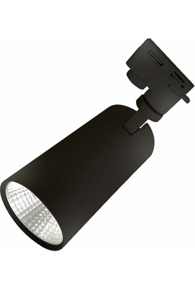 Ack 30W Siyah 4000K Monofaze Cob LED Ray Armatür ACK-AD30-01911