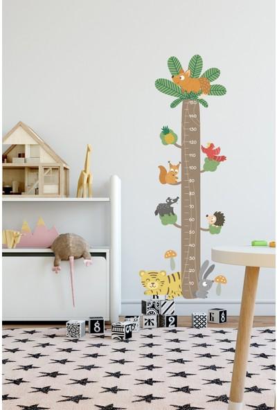 Sim Tasarım Orman Canlıları Boy Ölçer Duvar Sticker
