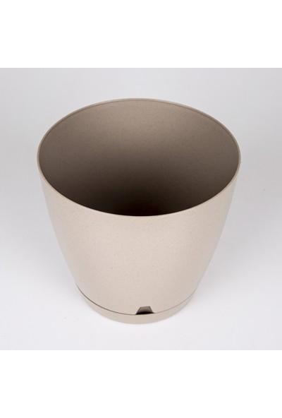 Veramaya Plastik Begonya Saksı No:4 Bej 5,5 Litre 22X20 cm