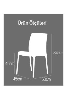 Novussi Sunny Rattan Kolsuz Sandalye Kapiçino