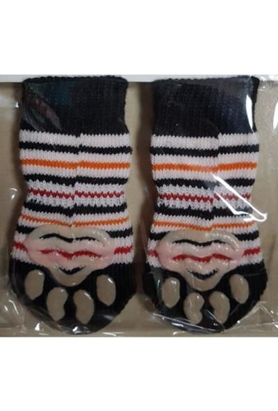 Little Friends Köpek Çorabı Large Beden Siyah Turuncu Kırmızı Renk Çizgili Desenli