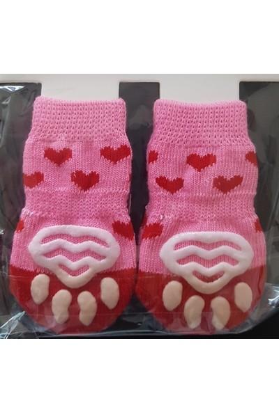 Little Friends Köpek Çorabı Large Kırmızı - Pembe Renk ve Kalp Desenli