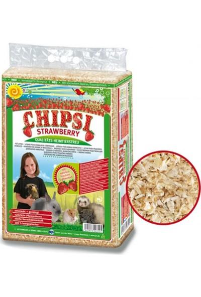 Cats Best Chipsi Çilekli Talaş 60 Lt
