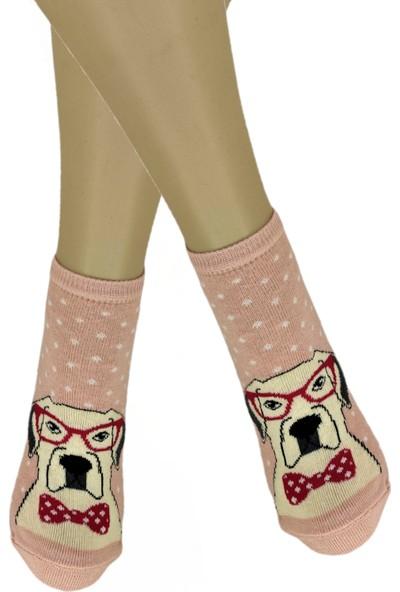 Calze Vita Köpek Deseli Kadın Patik