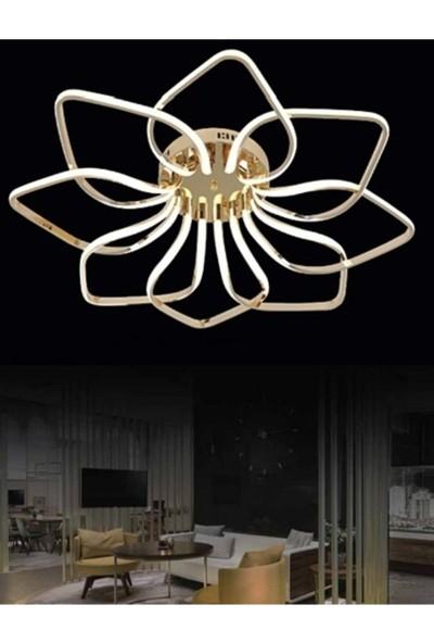 Burenze Luxury Modern Plafonyer LED Avize Gold Sarı Kademeli 3 Renk BURENZE870