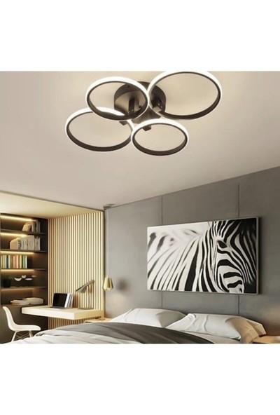 Burenze A+ Modern Plafonyer LED Avize Kademeli 3 Renk Concept Ürün Koyu Kahve BURENZE844