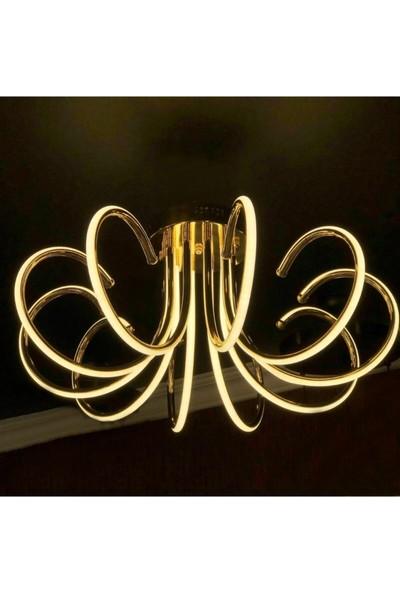 Burenze Luxury Modern Plafonyer LED Avize Concept Ürün Krom Gün Işığı 10 Kollu BURENZE792