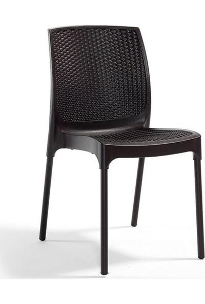Novussi Sunny Rattan Kolsuz Sandalye Kahve