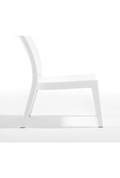 Rattan 4 Adet Capissi Zeugma Rattan Kolsuz Sandalye Beyaz