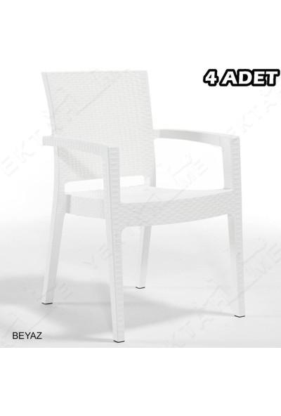Novussi 4 Adet Novussi Paris Rattan Kollu Sandalye Koltuk Beyaz