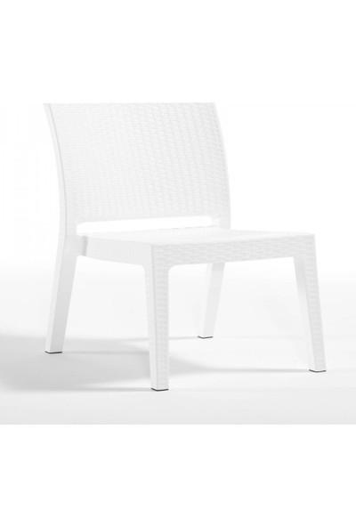 Rattan 6 Adet Capissi Zeugma Rattan Kolsuz Sandalye Beyaz