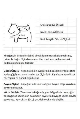 Lilidogs Kedi ve Köpek T-Shirt Mor M