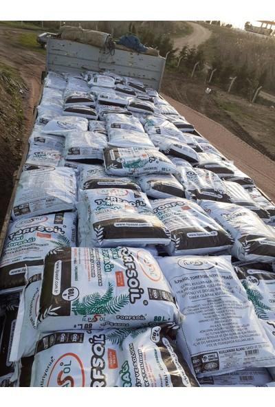 Ilpasol Torfsoil Saksı ve Çiçek Toprağı Solucan Gübresi Torf Leonardit Perlit Karışımlı 25 kg