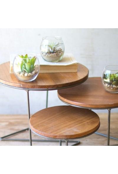 Abronya Metal Ahşaplı Sehpa Üçlü Tasarım Yuvarlak Sehpa Minimalist Tasarım Dekoratif Ürün Masaüstü Sehpa