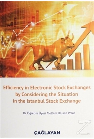 Efficiency In Electronic Stock Exchanges By Considering The Situation In The Istanbul Stock Exchange - Meltem Ulusan Polat