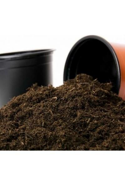Agrobazaar Bitki Yetiştirme Saksı Toprağı 10 Lt