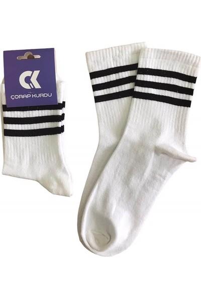 Çorap Kurdu Pamuklu Renkli Unisex Soket Çemberli Çorap