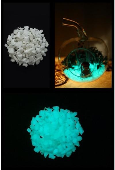 Arge-Kimya Glow In The Dark Stones BLUE_01 (12-20MM/50GR) / Karanlıkta Parlayan Taşlar MAVI_01