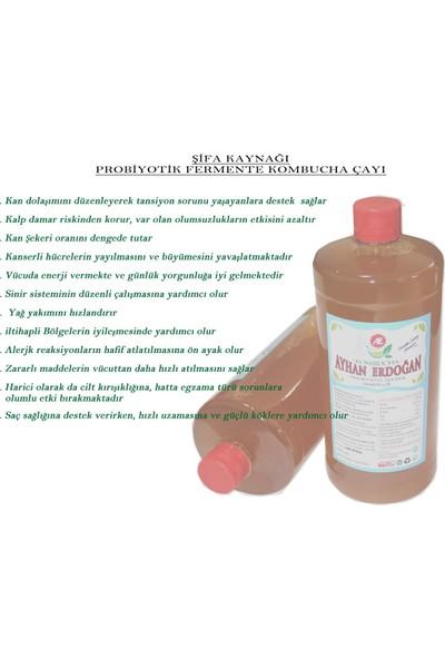Kombucha Probiyotik Fermente (Kombu) Kombucha Çayı 1000 ml