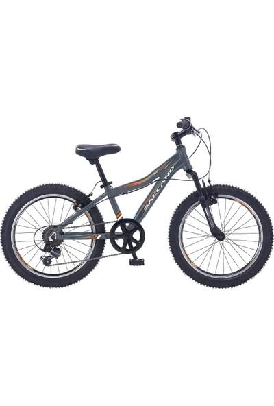 Salcano NG950 20 Jant Vitesli Erkek Çocuk Bisikleti (120-145 cm Boy)