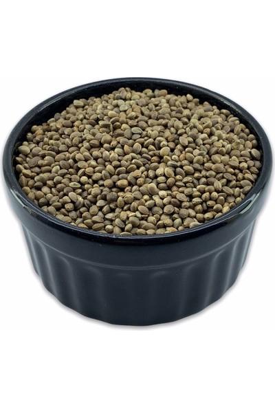 Akçam Gurme Kenevir Tohumu Çedene 500 gr
