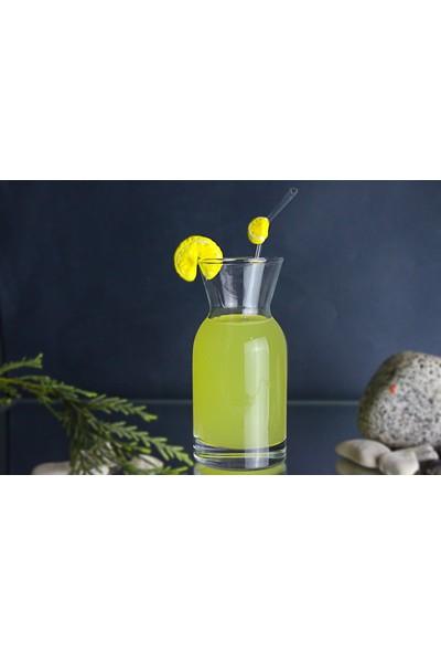 Adamodart Limonata Karafı ve Cam Pipet Seti