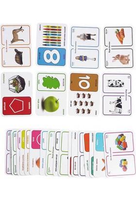 Sayılar, Renkler, Şekiller, İlişki Kurma, Zıt Kavramlar