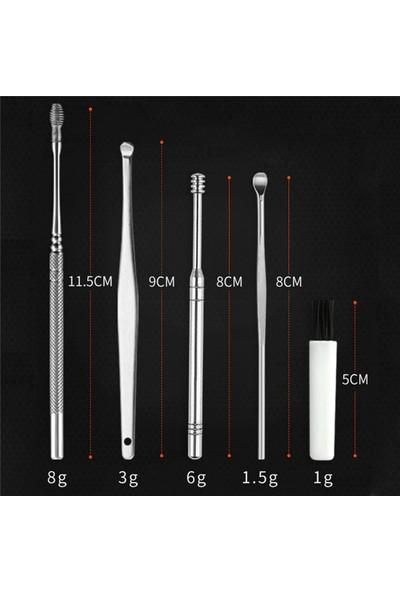 Buffer 6 Parça Paslanmaz Çelik Kulak Balmumu Toplayıcı Çıkarıcı Temizleyici Bakımı Çubuk Seti