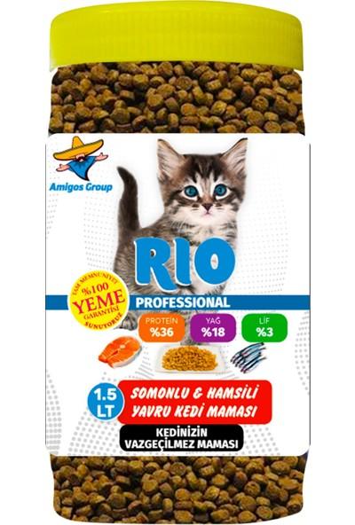 Rıo Professıonal Somonlu Hamsili Yavru Kedi Maması 1.5 lt